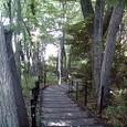 道を探し、道を歩む